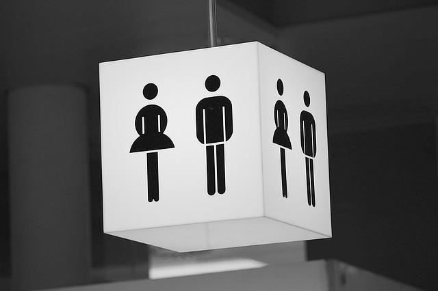 public-toilet-548409_640